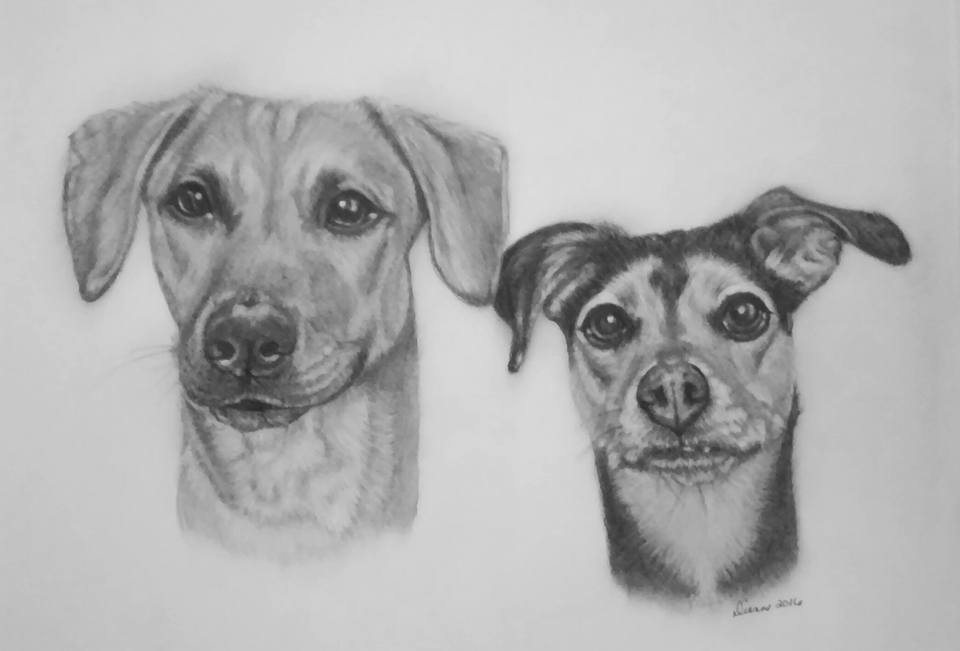 Pencil Puppy Portrait 2